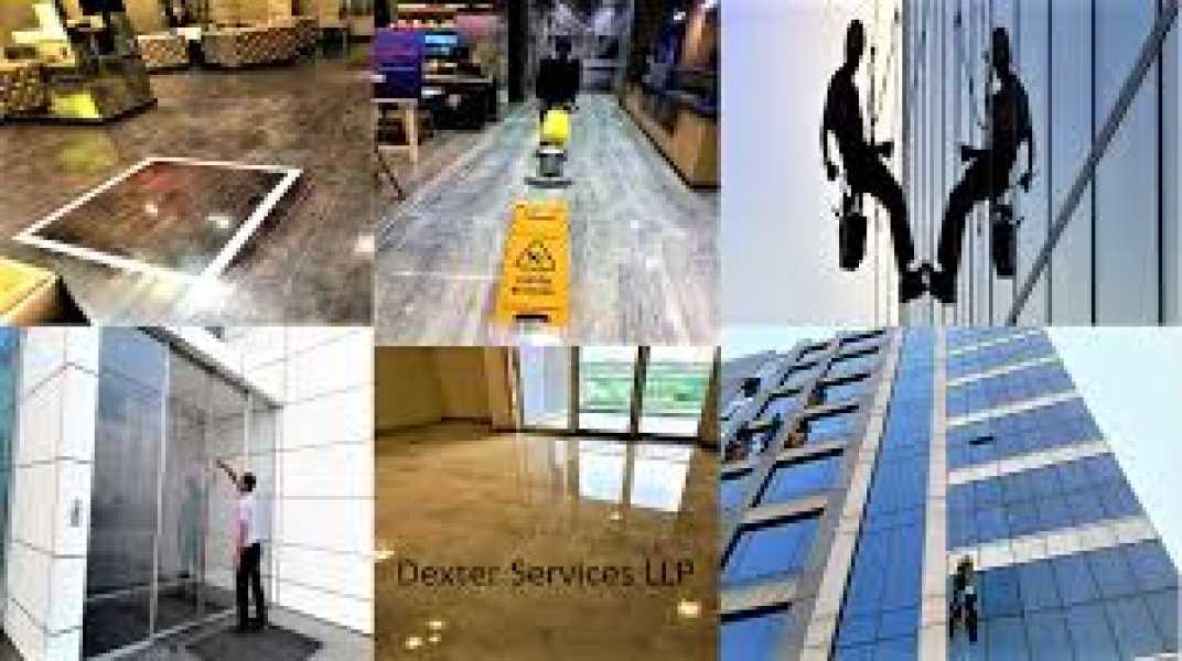 Dexter Services LLP