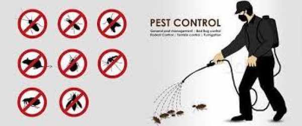 First Orbit Pest Control Service