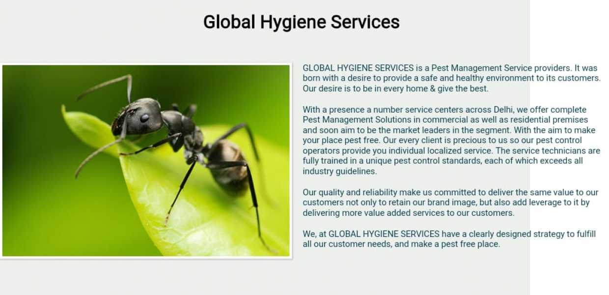 Global Hygiene Services
