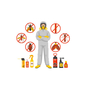 Pest Control Services in Ghaziabad